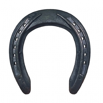 AVANTI STEEL HORSE SHOES F UC